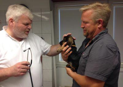 Tierarztcheck in der Tierklinik Lüneburg